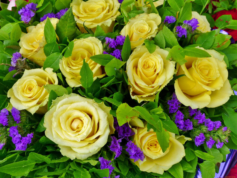 картинка цветы букет розы желтых бучинская талантливая